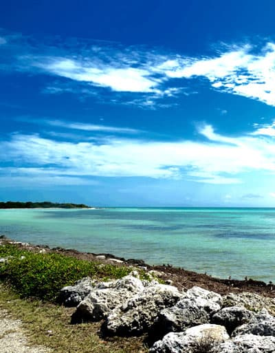 """New Novel, """"Run Away to the Keys"""", is Almost Here!"""
