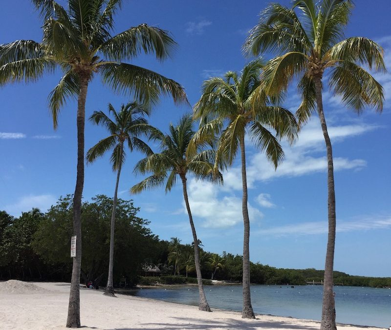 Welcome to Founder's Park in Islamorada in the Florida Keys